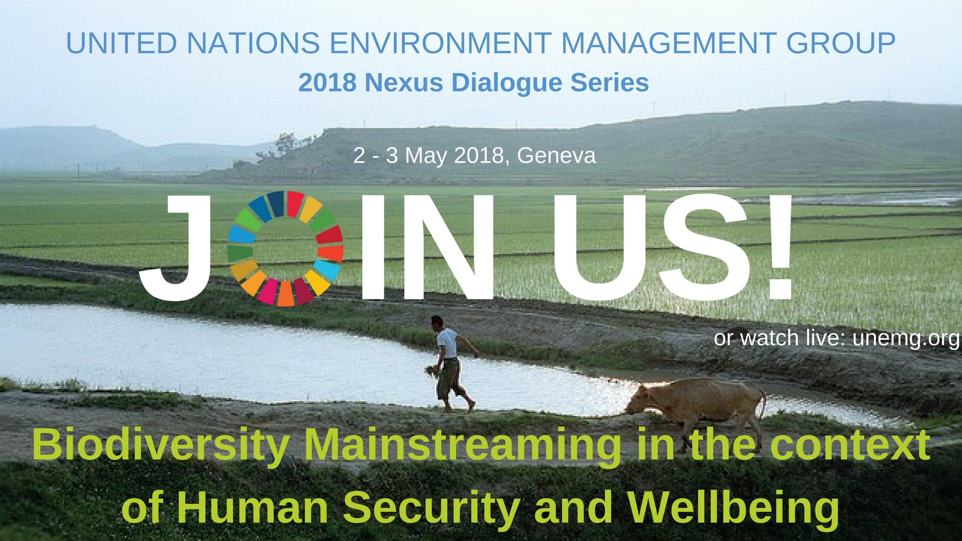 UN Environment Management Group Nexus Dialogue on Biodiversity