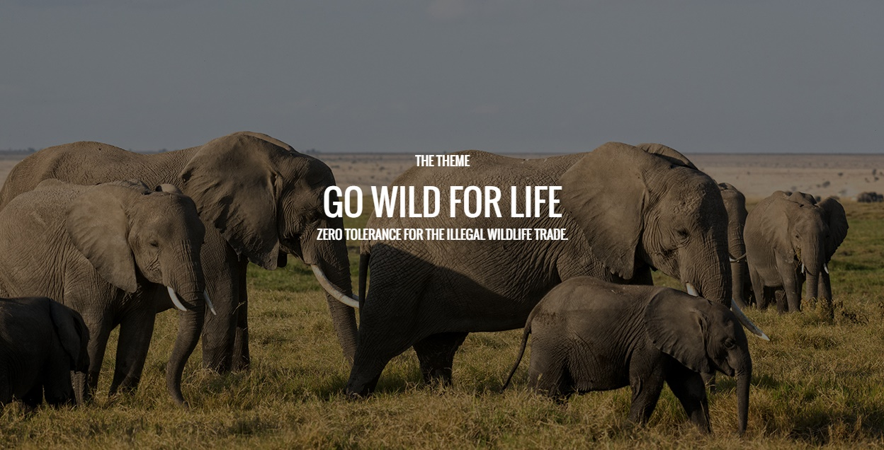 Poaching and Illegal Wildlife Trade