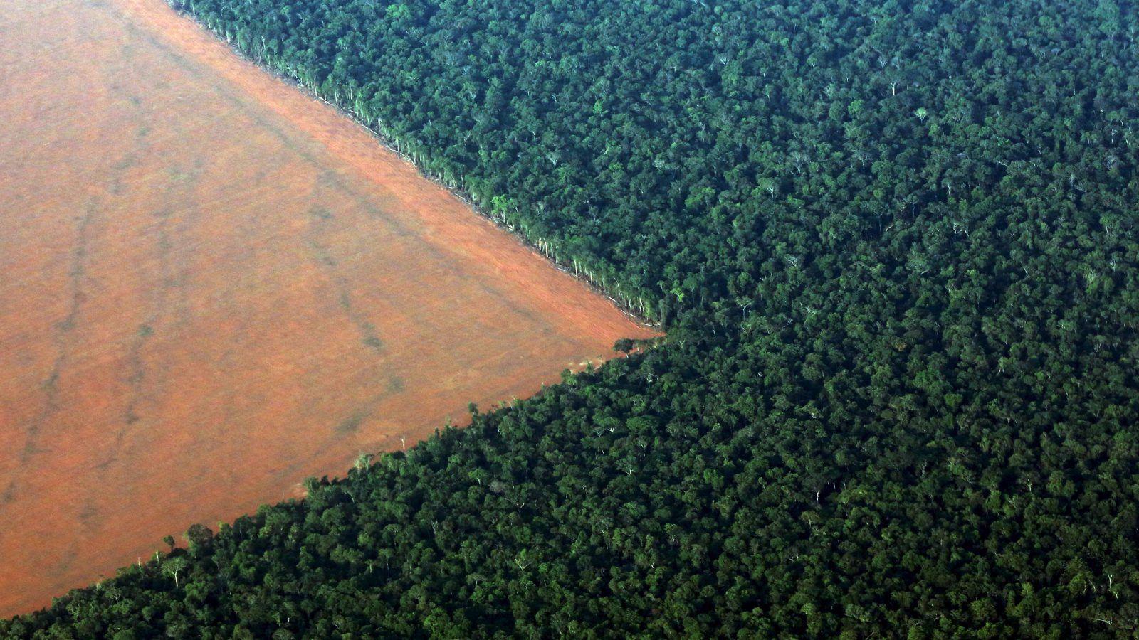 The Amazon is under threat